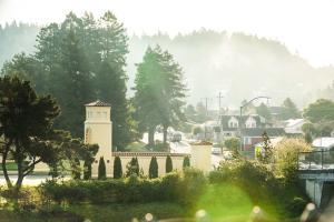 Campus Fog